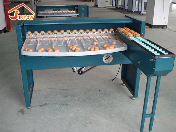 egg grader machine 4.jpg